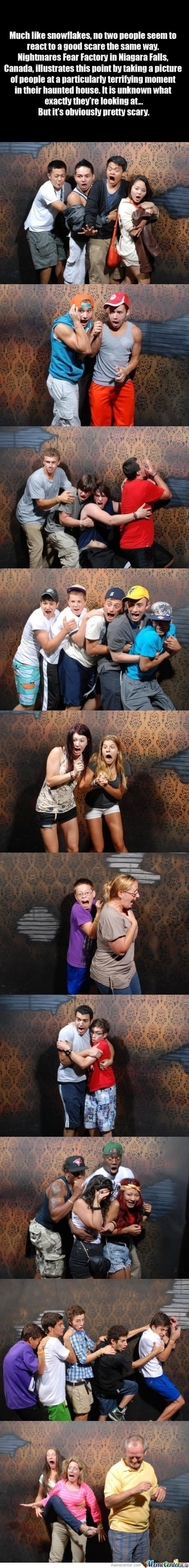 50 hilariously ridiculous haunted house reactions -  Fear Factory In Niagara Falls Canada Illustrates This Point By Taking A Picture Of People At A Particulary Terrifying Moment In Their Haunted House
