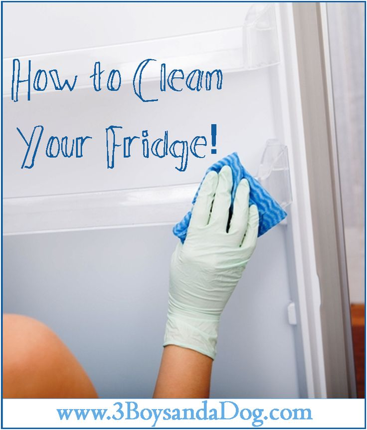 How to Professionally Clean Out Your Fridge