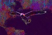 """New artwork for sale! - """" Sea Gull Flying by PixBreak Art """" - http://ift.tt/2u27j1H"""