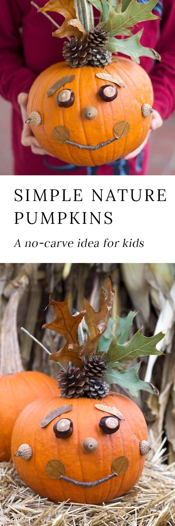 Kids will love creating a whimsical No-Carve Nature Pumpkin with pinecones, nuts, seeds, leaves, and twigs. Perfect autumn fun for families! #halloween via @https://www.pinterest.com/fireflymudpie/