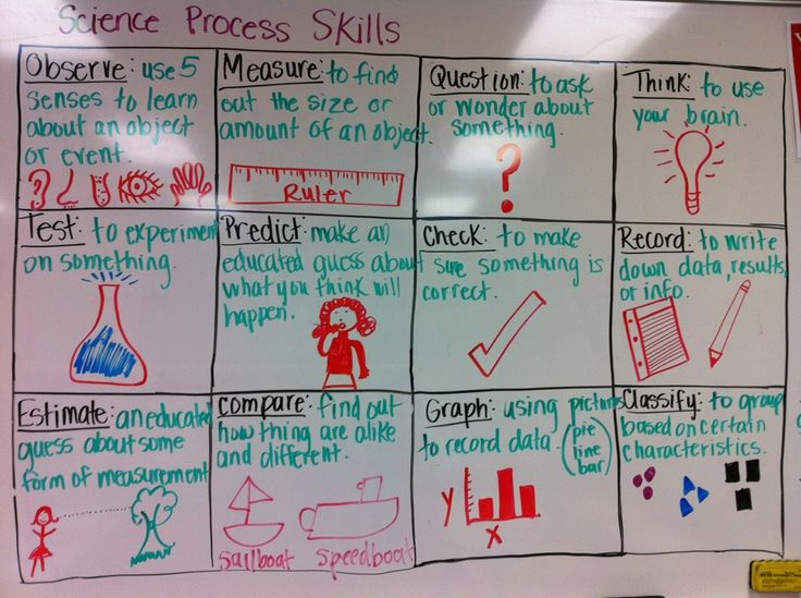17 Best ideas about Science Process Skills on Pinterest | Teaching ...