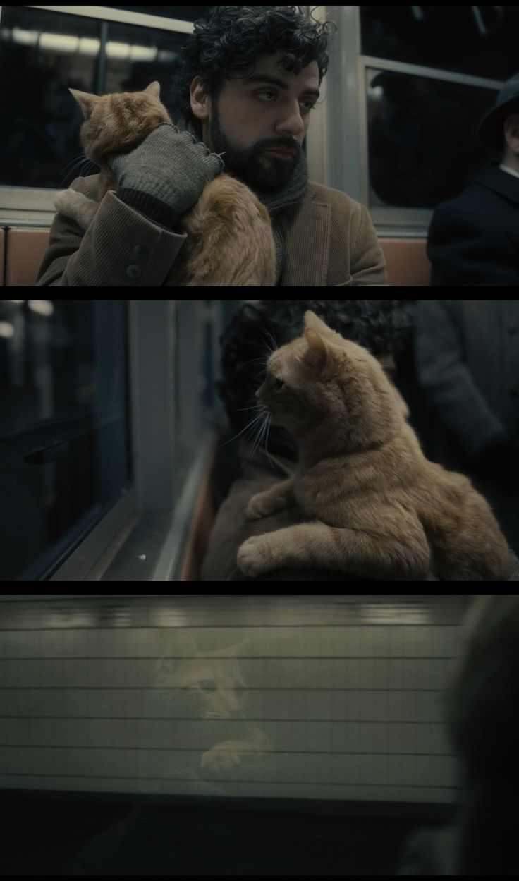 amazing cinematography: Inside Llewyn Davis (2013) Directed by: Ethan...