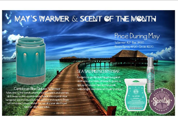Ready for May's Special? Here it is, the lovely Caribbean Blue Warmer & great scent that conquers summertime fun Sea Salt Mist Orders yours today, Scent & Warmer of the month is 10% off during May!! Visit --> https://carischlie.scentsy.us/Buy/Category/2522