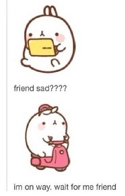 Tumblr  humour  funny  lol  haha  chat post  text post