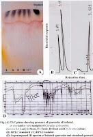 """Isolasi dan Identifikasi Flavonoid """"Quercetin"""" dari Citrullus colocynthis (Linn.) Schrad. - Jurnal Mikrobiologi"""