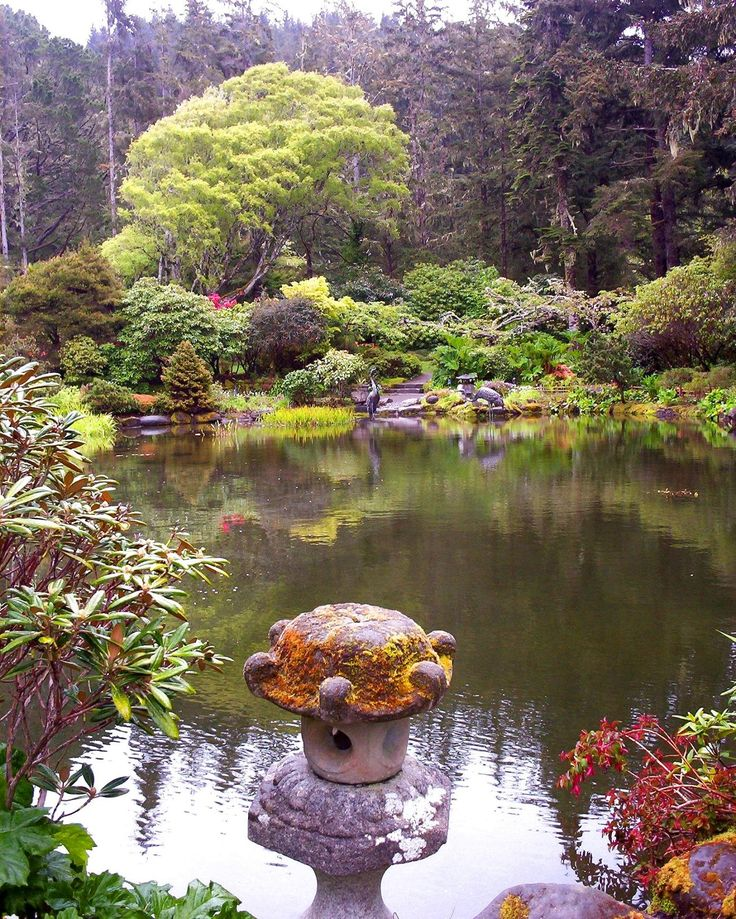 Koi Ponds And Gardens: 113 Best Images About Japanese Koi Ponds On Pinterest