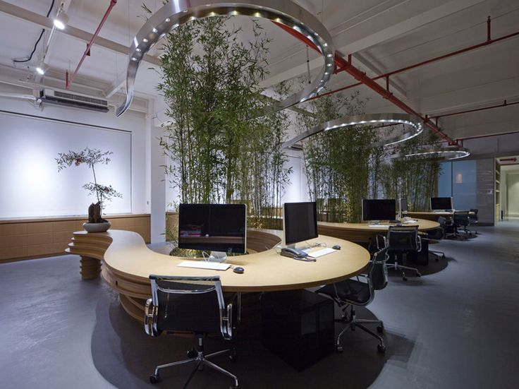 JW associates plants bamboo office interior in shanghai  Liking the bringing of the outside inside!