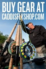 The Caddis Fly: Oregon Fly Fishing Blog   McKenzie River fly fishing, Oregon fly fishing reports and fly tying videos.