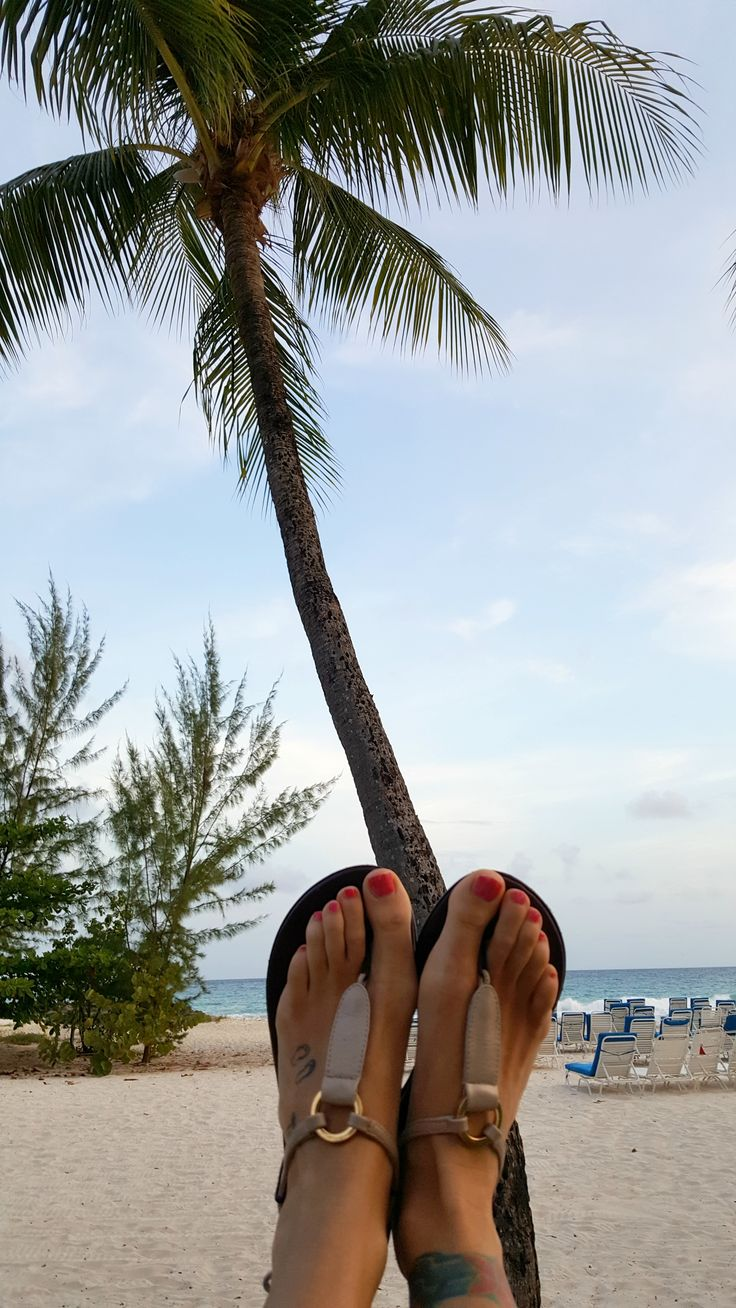 Hanging out with the palm trees in Barbados! #traveltheworldinshoesyoulove #slinks #besttravelshoes #interchangeableshoes