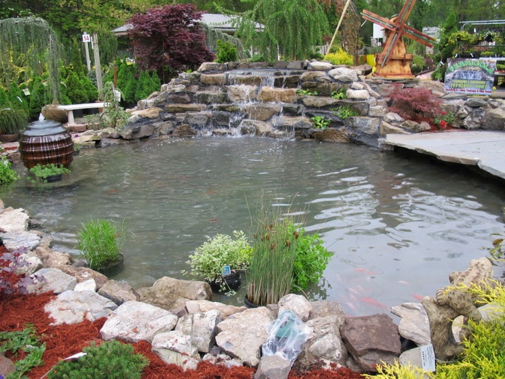 17 best images about koi ponds on pinterest gardens for Koi pool garden centre
