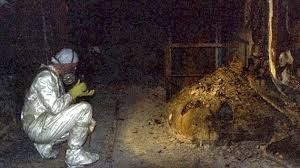Resultado de imagem para reator 4 de chernobyl