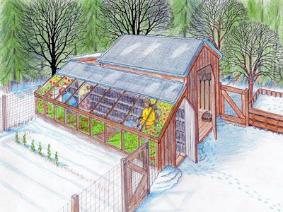 Backyard sustainability, greenhouse and chicken coop for year round use.