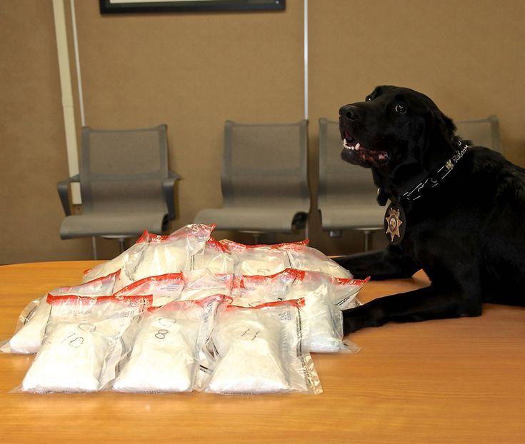 Police busted a meth lab using a meth lab