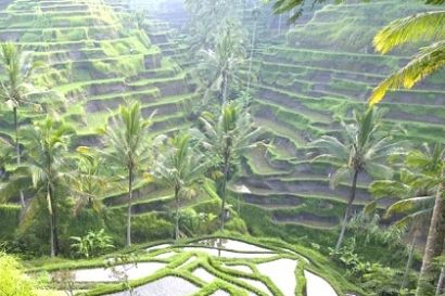 Charm of Bali is second to none, almost every tour you want is in this paradise island. For most people visiting Bali is a dream, on the island of Bali, that we can see the natural beauty of Bali