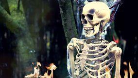 Skeleton on Fire stock video