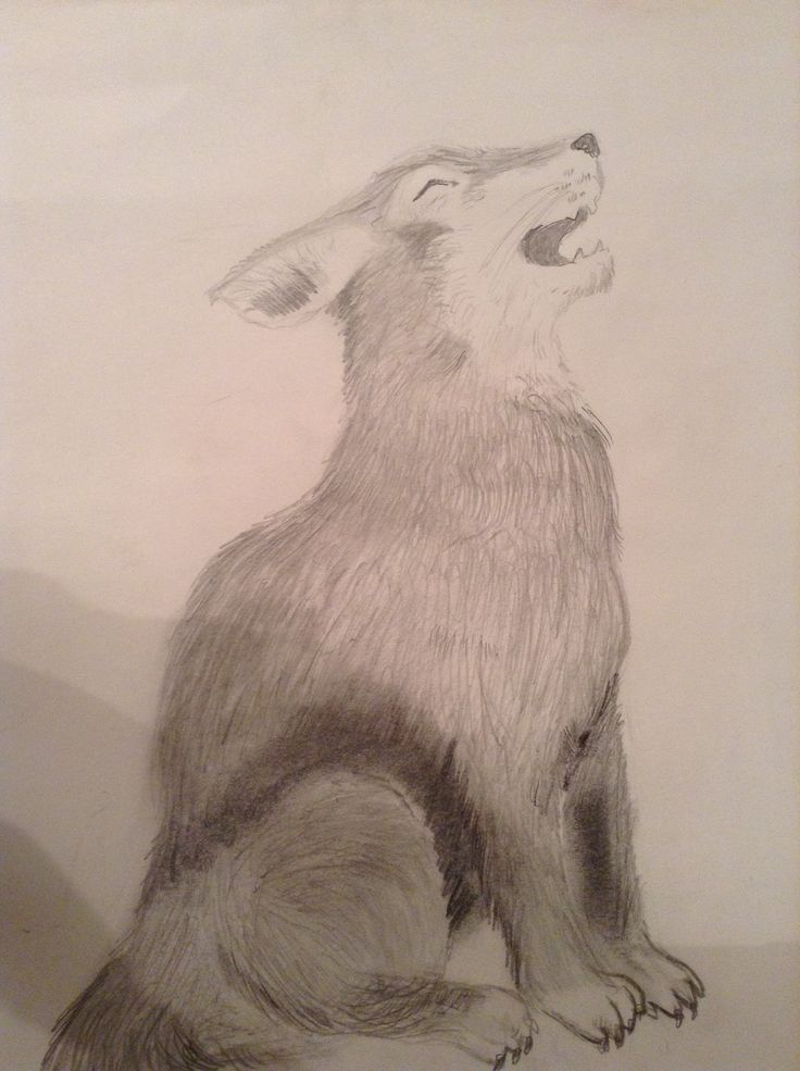 An awesome wolf I drew at art when I was injured