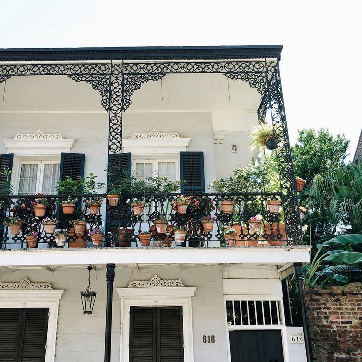 Ideas about new orleans decor on pinterest