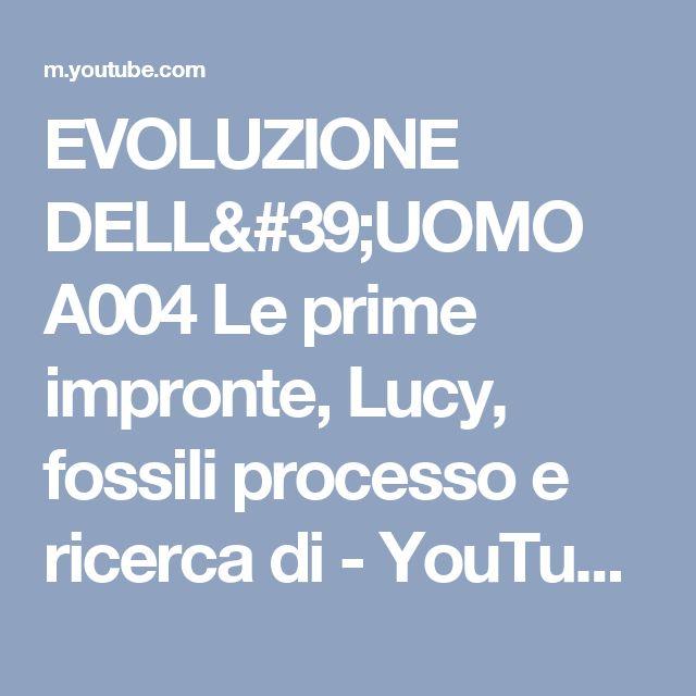 EVOLUZIONE DELL'UOMO A004 Le prime impronte, Lucy, fossili processo e ricerca di - YouTube
