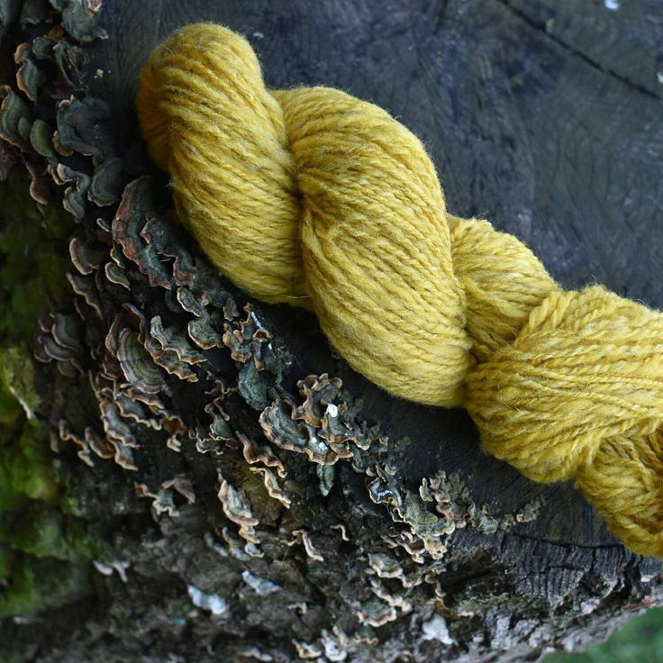 I wasn't quite sure about this yarn at first but I love how it turned out. I combined the naturally colored yellow merino with a little bit of dark grey jacob and white merino. Two plyed, long drawn woolen.  #yarn #yarnlover #yarnlovers #yarnlove #handspun #handspunyarn #yarnspinning #yarnspinner #knittersofinstagram #crochetersofinstagram #spinstagram #yellow #natural #fiberartist #fiberart #fibers #předení #makersgonnamake