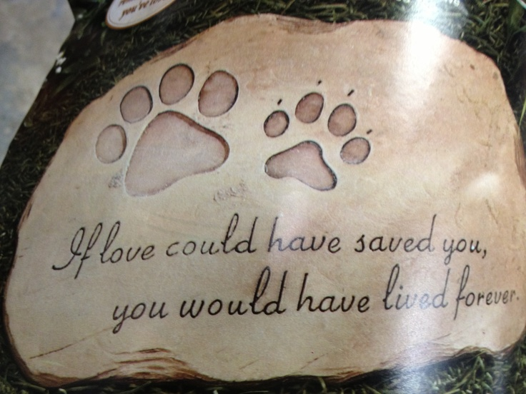 Beautiful stone for your pet...RIP Nash Cutest dogs ever