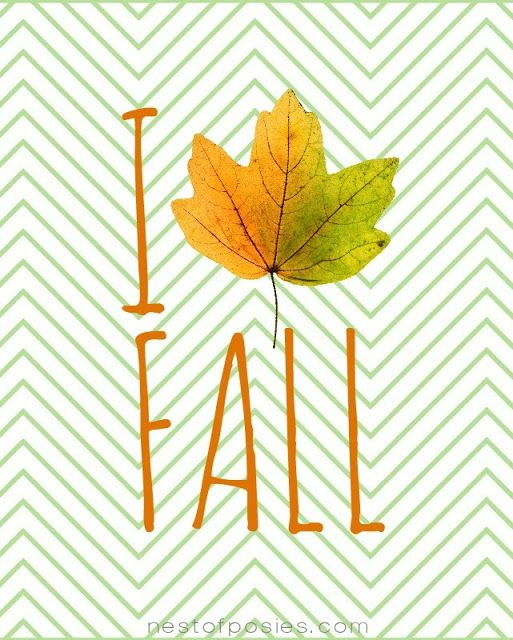 I prefer saying Autumn...but yes yes my sentiments exactly