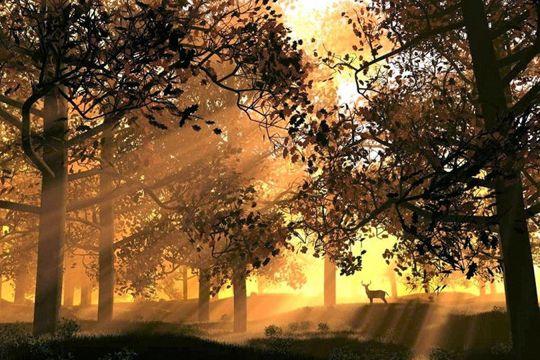 Silhouettes, rayons de soleil, monuments dans l'ombre... Vous avez su utiliser la lumière à contre-jour pour sublimer vos clichés.