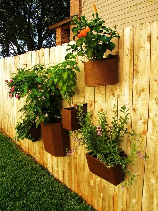 Best 25 fence planters ideas on pinterest outdoor for Privacy wall planter