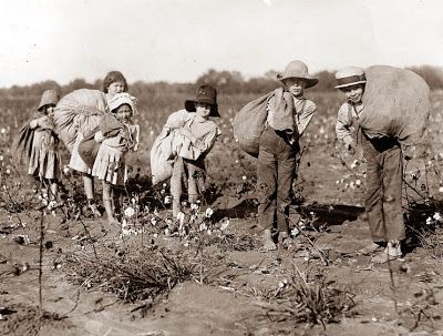 1910's, Children picking cotton - some of these children look like they are no older that 6 or 7, and are working in the field barefoot.