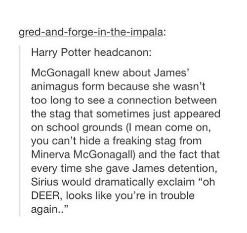 Of course McGonagall knew! She knew about all 3 of them and didn't say anything because she knew why they did it!