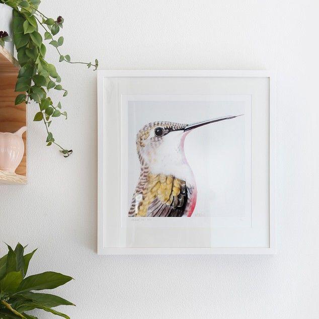 """Ava"" Hummingbird Art Print by Margaret Petchell NZ Art Prints, Art Framing Design Prints, Posters & NZ Design Gifts   endemicworld"
