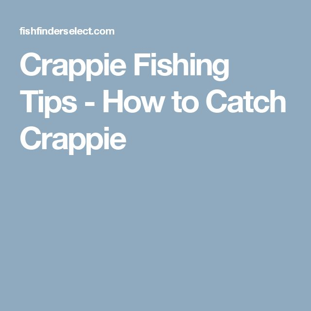 Best 25 crappie fishing tips ideas on pinterest crappie for Best crappie fishing times