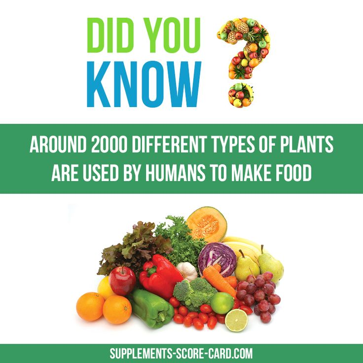 "funfoodfacts: "" 2000 types of plantsAround 2000 diferent types of plants are used by humans to make food Things you dont know about food Supplements ScoreCard """