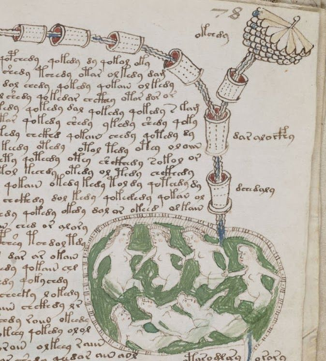 The Archaeology News Network: Ten words in mysterious Voynich Manuscript decoded
