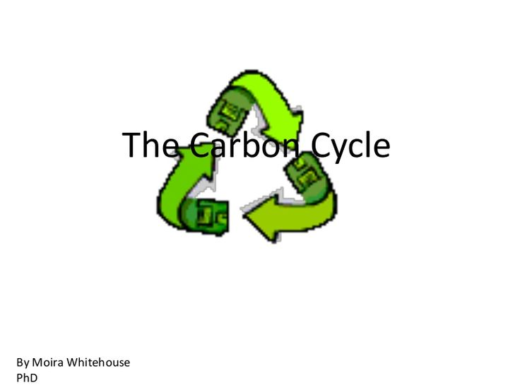 CARBON CYCLE (teach) carbon dioxide oxygen plant animal cycle PowerPoint - needs to be adapted for 3rd grade