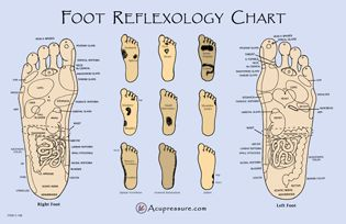 Free Printable Reflexology Charts | Acupressure & Acupuncture Point Charts & Meridian Charts