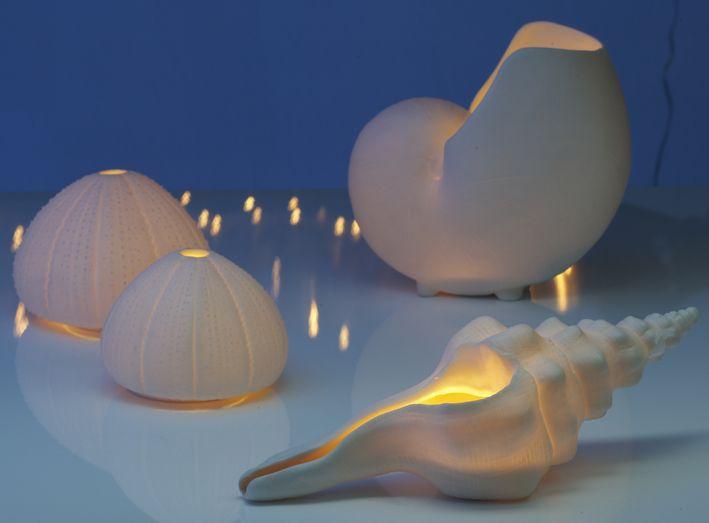#lunac #porcelain #lunadelmar #conch #sea #urchin #underwater #t'lights