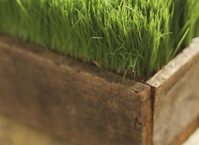 Best 25 planter box plans ideas on pinterest wooden for Tapered planter box plans