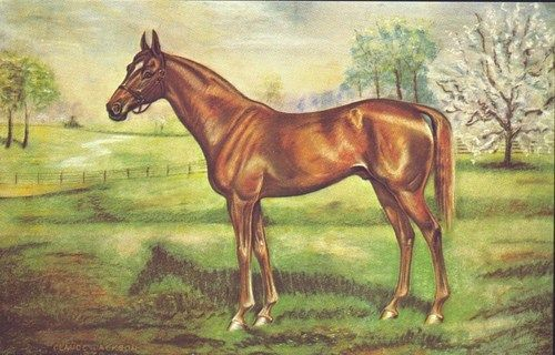 85 Best Horses In Art Famous Thoroughbred Images On