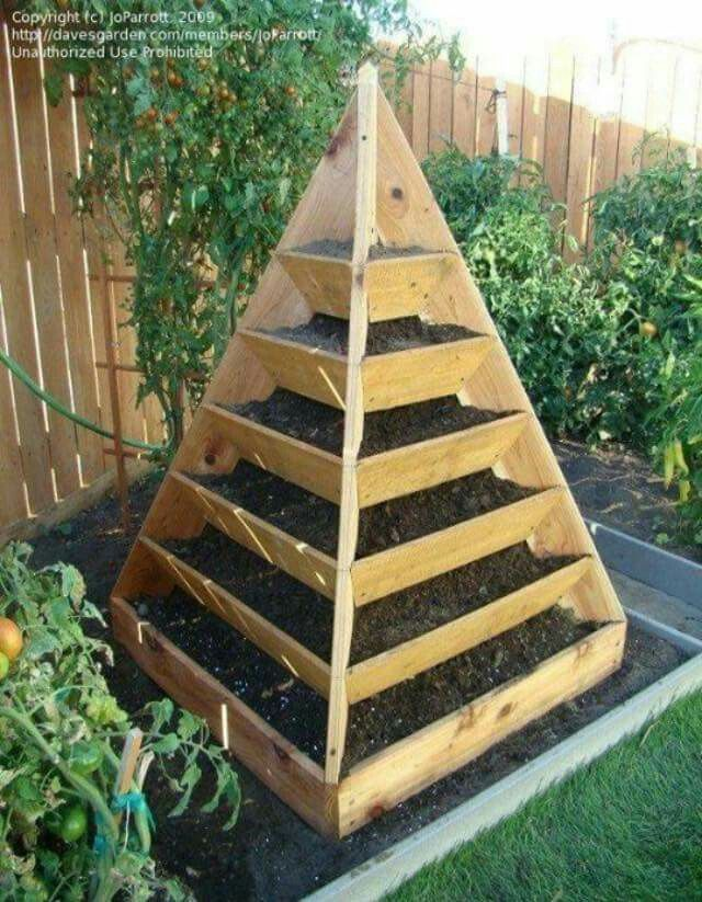 Best 20 raised garden beds ideas on pinterest for Vegetable garden bed design