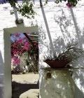 Τα καλοκαίρια στην Αντίπαρο, οι βουκαμβίλιες αναρριχώνται πάνω σε αδρά ασβεστωμένους τοίχους, τα παλιά πιθάρια «ξεκουράζονται» στις αυλέςκι όλα αποπνέουν φως, νοικοκυροσύνη, απλότητα...