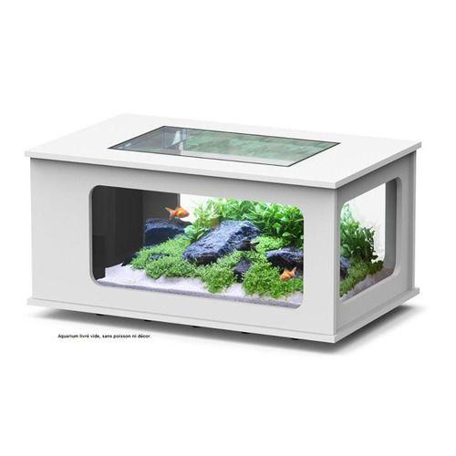 Découvrez la nouvelle gamme d'AquaTable sur animaleco.com. Aquarium avec éclairage LED. Plusieurs coloris disponibles. http://www.animaleco.com/aqua-table-led-100x63-blanc