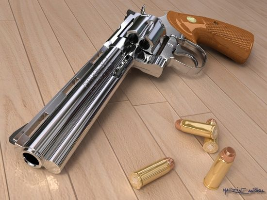 The Colt Python .357 magnum... Reminds me of Sheriff Rick Grimes