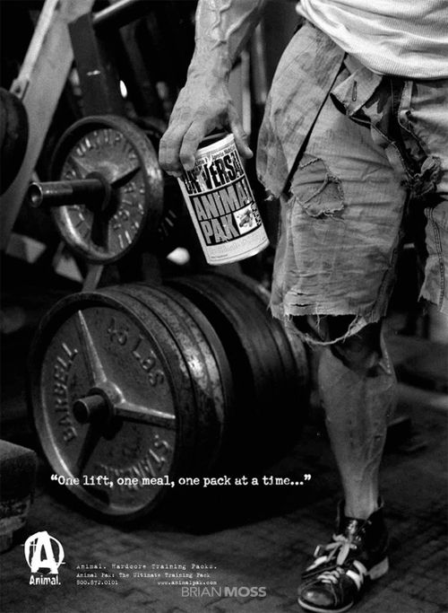 1000+ Images About Animal Pak On Pinterest