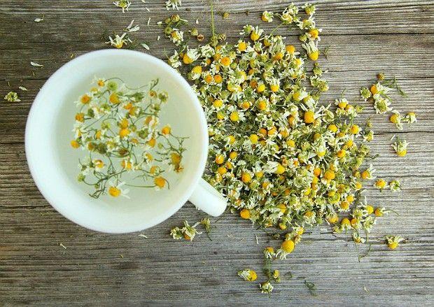 """Água aromatizada com camomila – Ação calmante é um dos principais <a href=""""http://www.bolsademulher.com/saude-mulher/cha-de-camomila-ajuda-a-emagrecer-conheca-outros-beneficios"""">benefícios da camomila</a>, que ainda pode ajudar a emagrecer e diminuir a ansiedade. O preparo deve ser feito com a flor seca, que pode ser encontrada em mercados ou lojas especializadas. Coloque um punhado na água, deixe dormir e coe antes de consumir."""