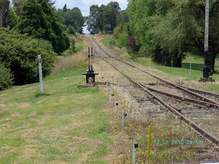 Tracks leading north from Guyra NSW