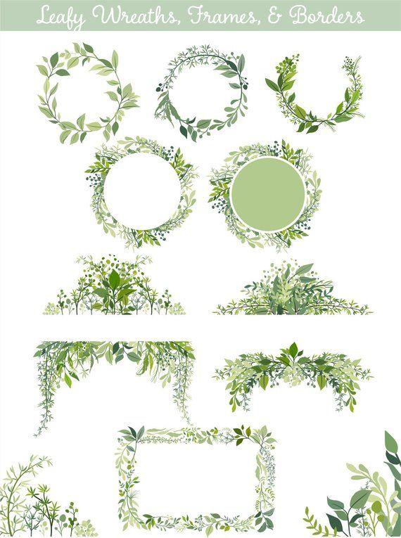 85653eb9aed0 Leaf Clip art Greenery Clipart Vector Foliage Leaf
