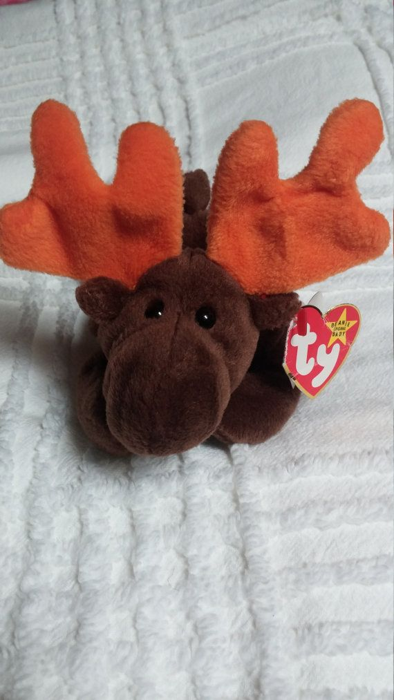 Hey, I found this really awesome Etsy listing at https://www.etsy.com/listing/243206837/ty-chocolate-moose-beanie-baby-original