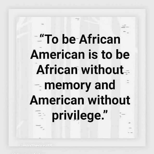 Pin On Privilege