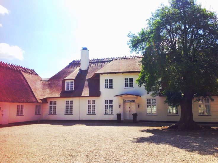 It's a beautiful summer day in Copenhagen today ☀️