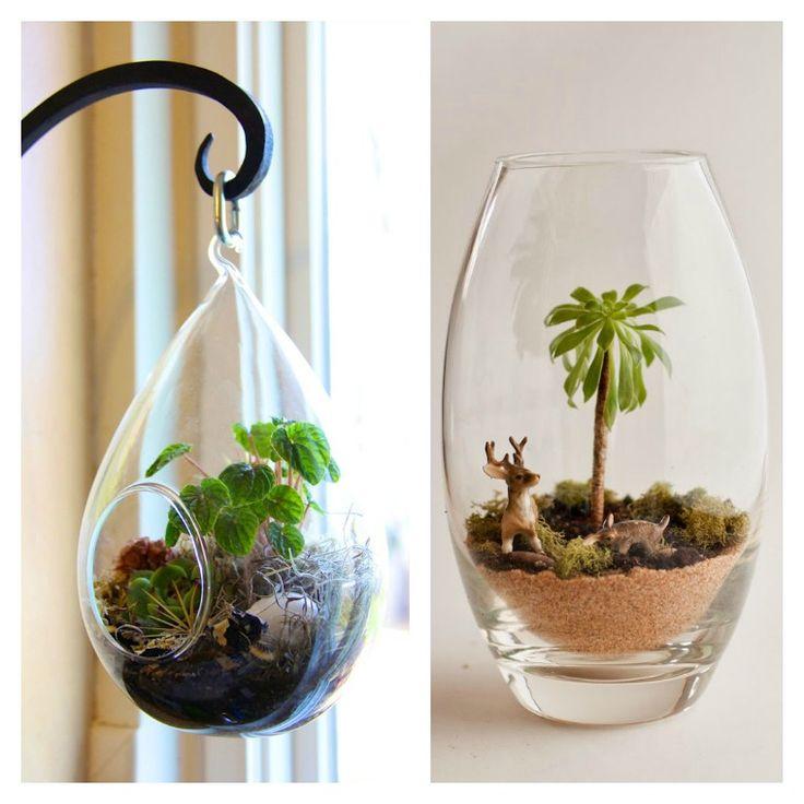 déco maison avec terrarium en verre